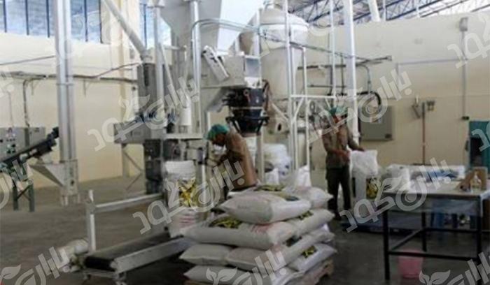 تولید کنندگان کود پلیت مرغی